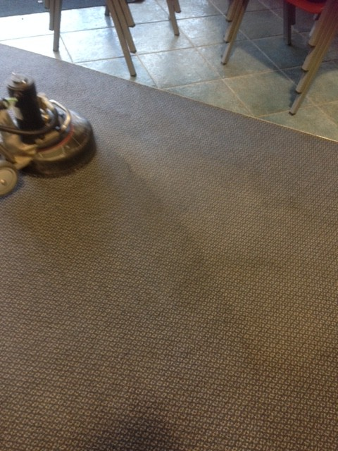 Maintenance Carpet Cleaning Redlands Brisbane Southside Qld