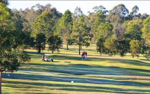 Carpet Cleaning Carindale Carpet Cleaning Carindale Just