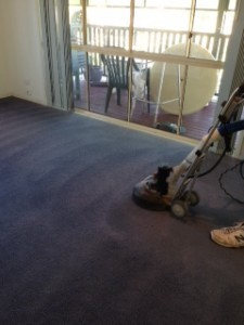 Commercial Carpet Cleaning Redbank
